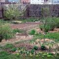 Весенний садик