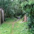 Идиллия деревенской жизни
